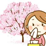 花見をしたいけど花粉症。アルコールで悪化する?屋内では?