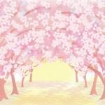 赤城南面千本桜まつり。桜の見頃は?周辺の温泉宿は?